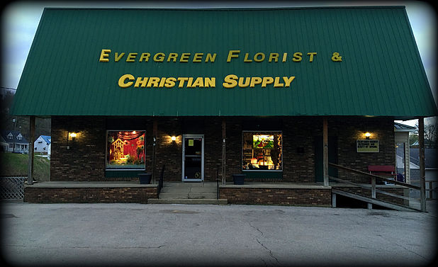 evergreen stock image