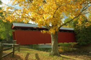 Stroll Through a Fall Festival at Cedar Lakes